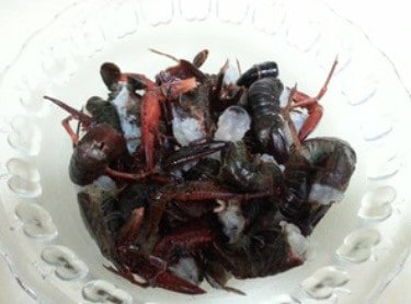 Chinese Chopped Chili Crawfish Recipe Hunan Flavor Step1