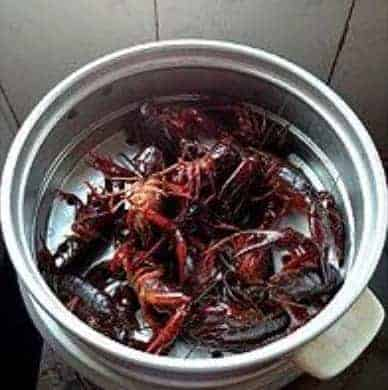 Chinese Steamed Crayfish Recipe 4 Step Step2