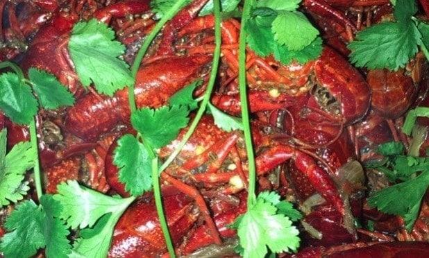 Chongqing Hot Pot flavor Crayfish Recipe
