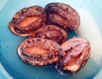 Chinese Oyster Sauce Flavour Abalone step1