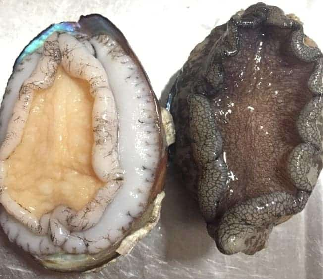 How to Buy and Wash Abalones