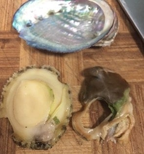 How to Buy and Wash Abalones step5