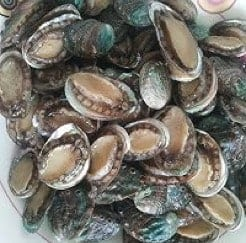 Sauteed Abalone With Board Bean Paste Recipe step1