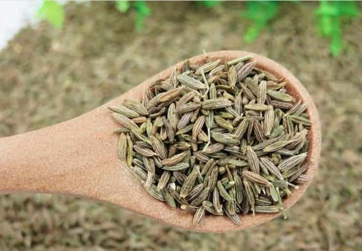 Cumin Seeds Taste Reviews