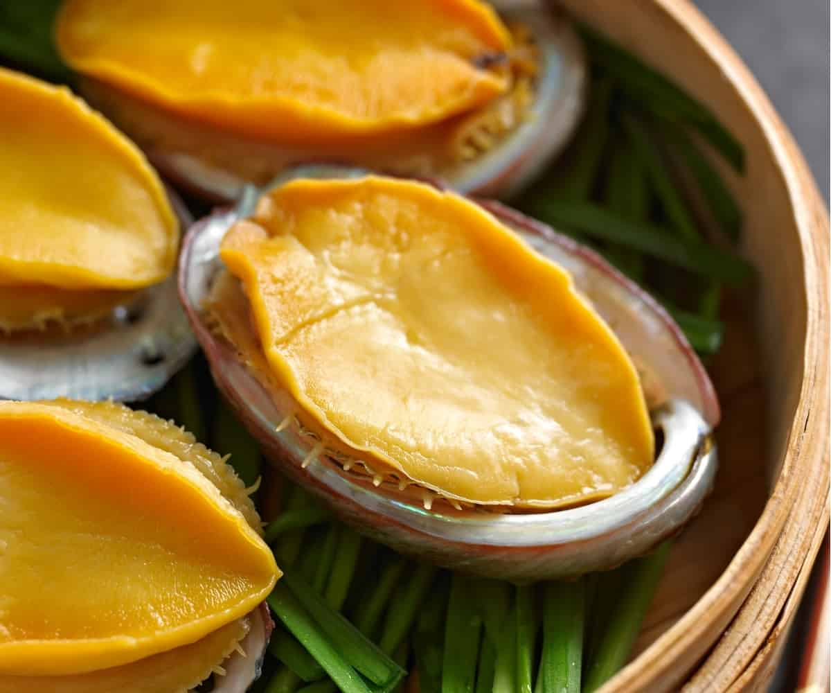 Best Abalone Recipes in Chinese Cuisine