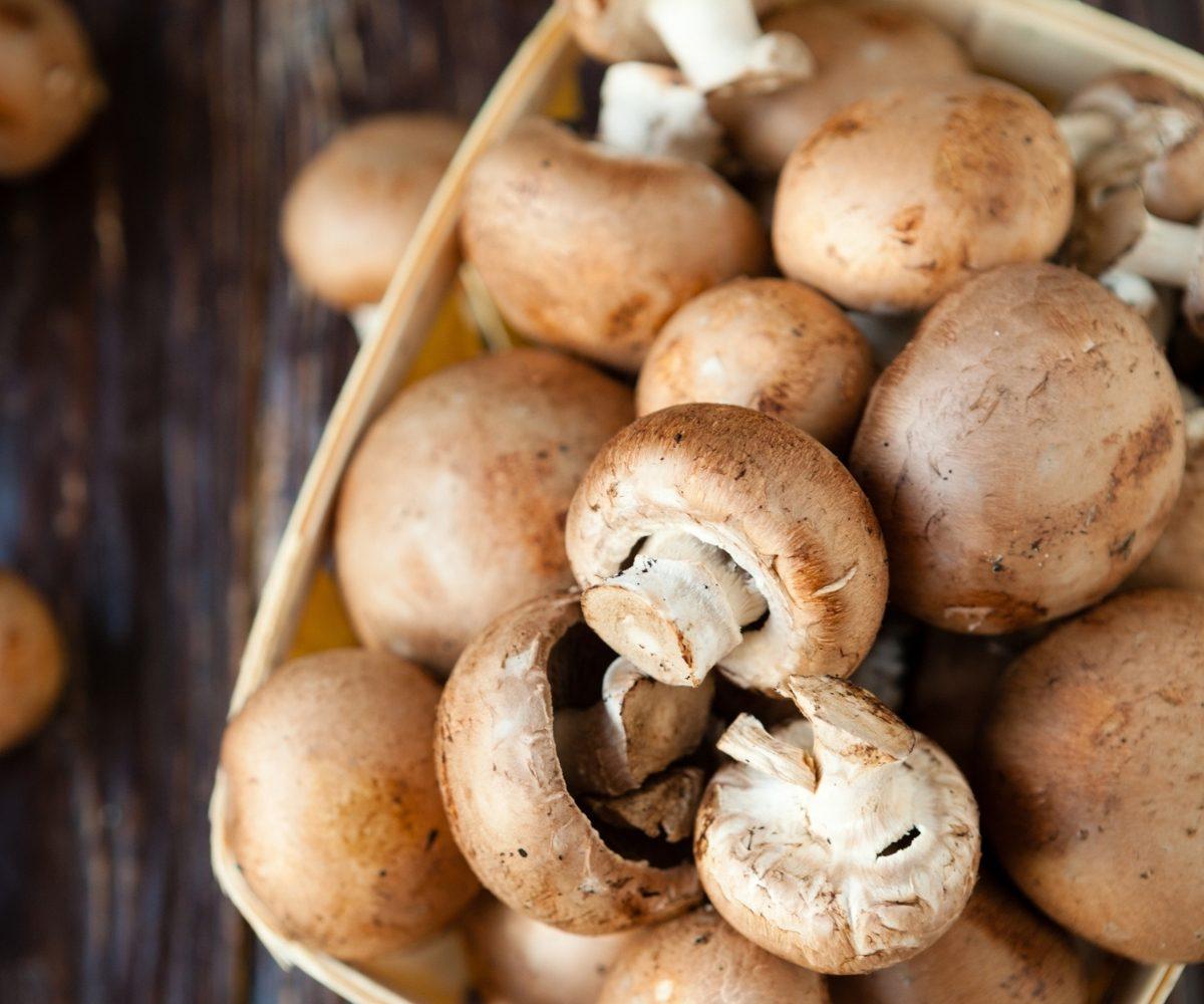 Best Mushroom Recipes in Chinese Cuisine