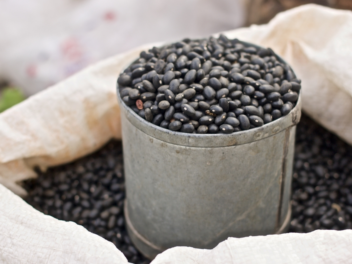 Top 10 Best Canned Black Beans