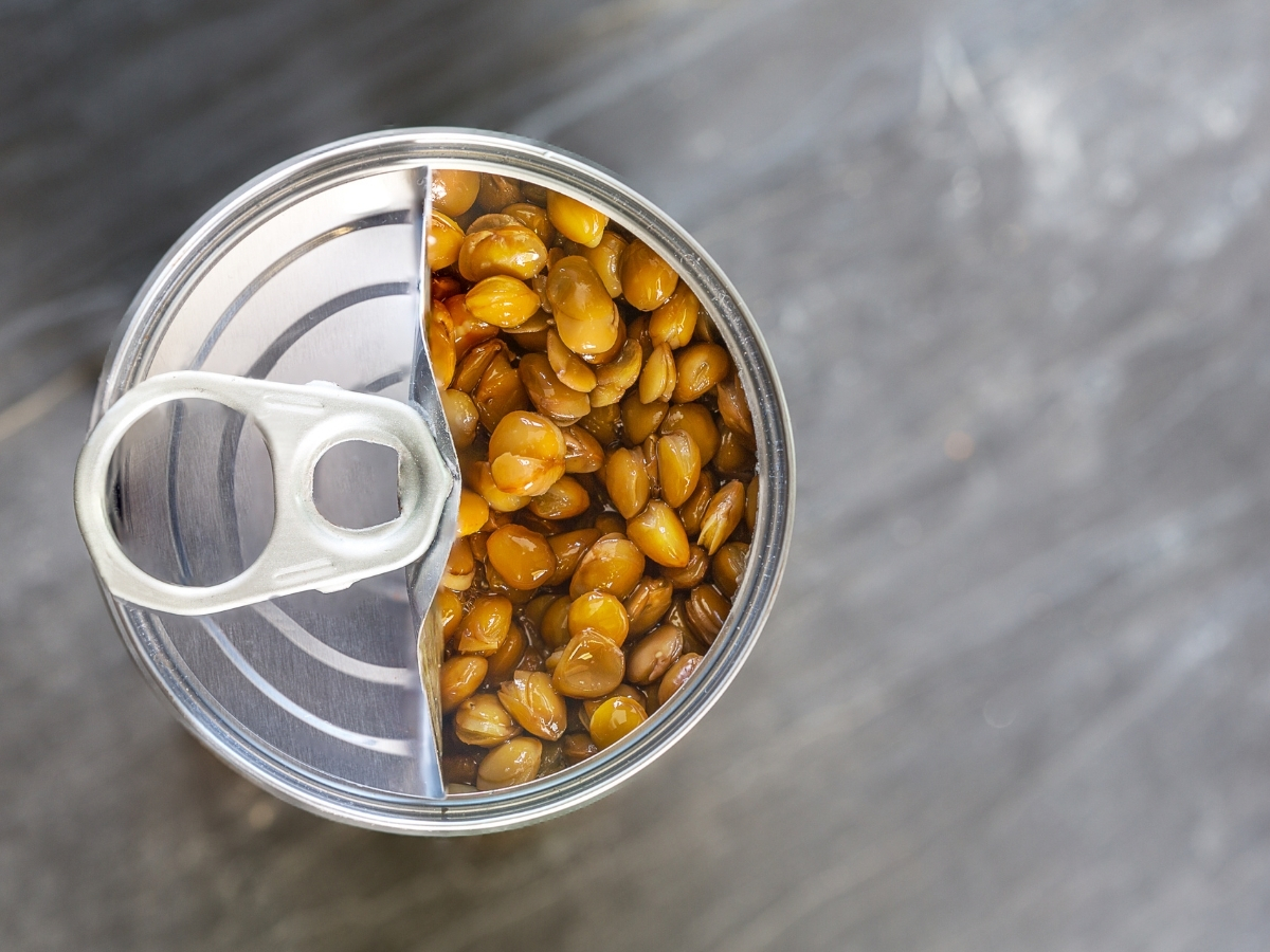 Top 10 Best Canned Lentils