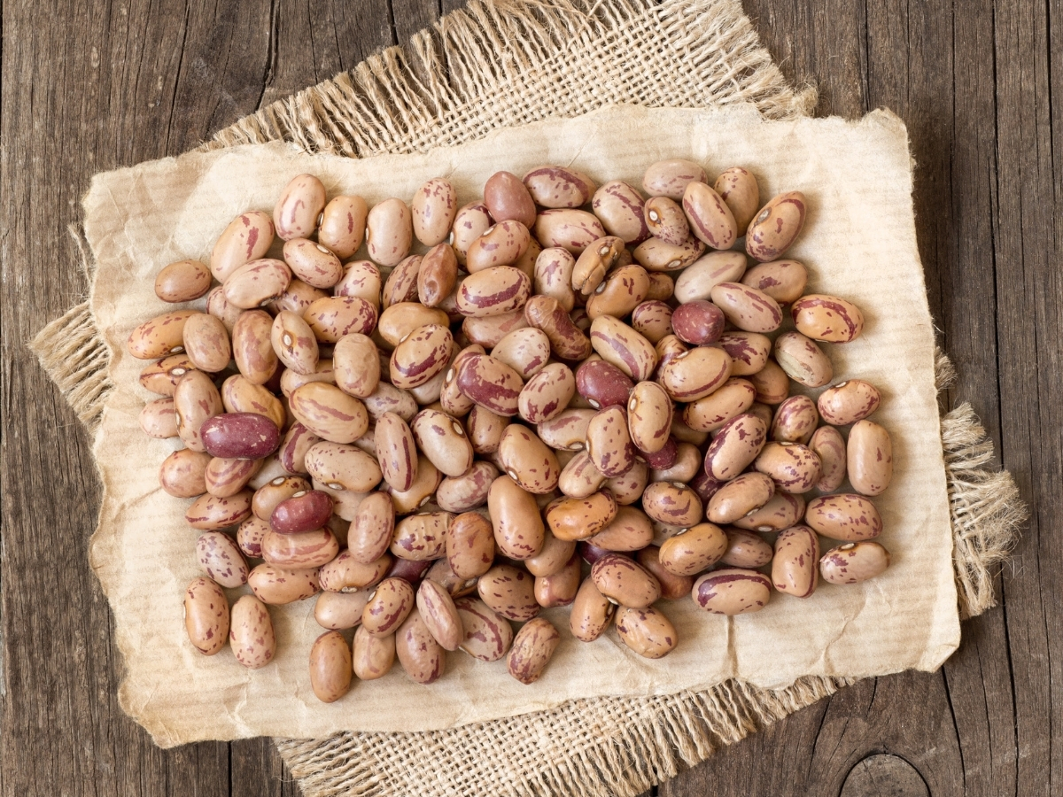 Top 10 Best Canned Pinto Beans