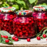 Top 10 Best Canned Cherries Reviews 2021