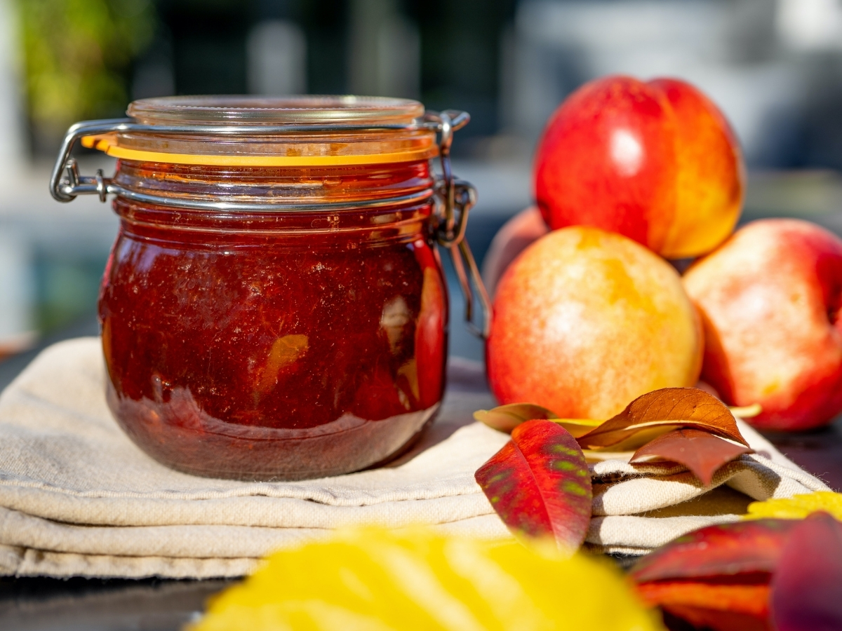 Top 10 Best Canned Nectarines