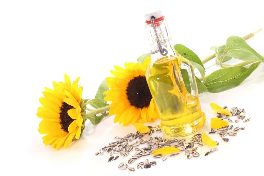 Is Sunflower Cooking Oil Healthy