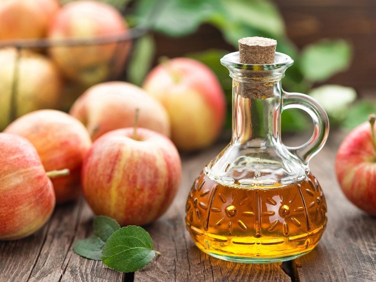 Top 10 Best Apple Cider Vinegar Taste Reviews
