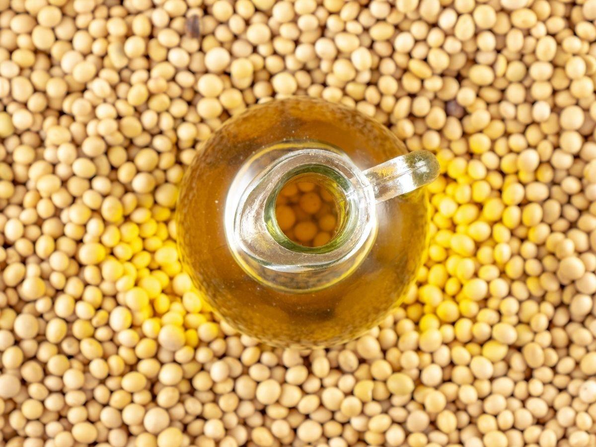 Top 10 Best Soybean Cooking Oil Taste Reviews